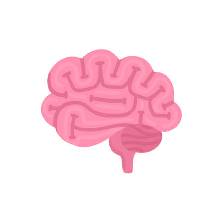 Vector isolated brain. Illustration for label of medicine, advertisement poster or banner for psychologist or department of neurology, design for website or article about mental health or neuroscience  イラスト・ベクター素材