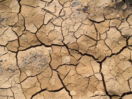 cracked earth background        photo