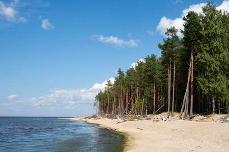 View to the Baltic sea coastline. 版權商用圖片