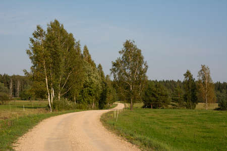Road, grass fields and trees landscape.