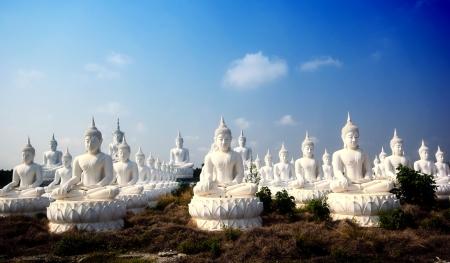 buddha image: Imagen de Buda en el templo tailand?s