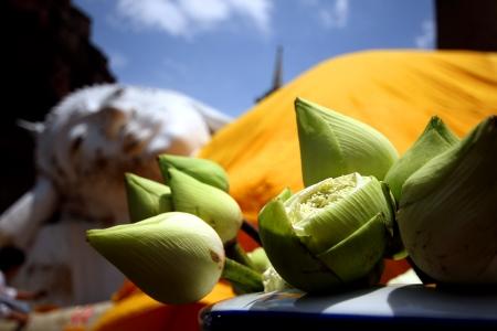 buddha image: Imagen de Buda en el templo tailand�s