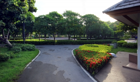 Green city park in the morning Stock Photo