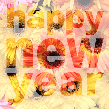 barberton daisy: word happy new year made from gerbera or barberton daisy flower picture
