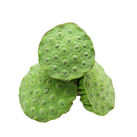 seedpod: green Lotus seeds  isolated on white background