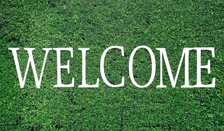 welcome to: white welcome word on green tree background Stock Photo