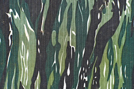 camouflage pattern: camouflage as background or pattern