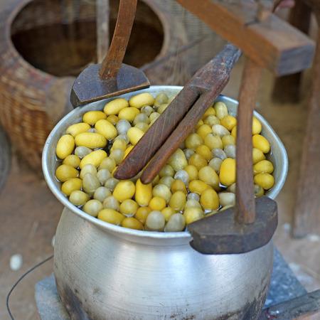 capullo: capullo hirviendo en una olla para hacer hilo de seda