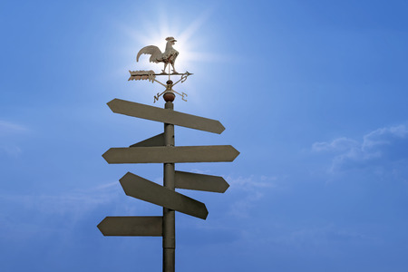 direction sign: direction sign with blank spaces for text on beautiful  sunlight background