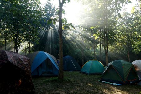 scouting: camping tents at a camp site with sunlight background