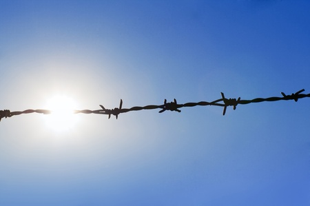 barbed wire on the sky background Stock Photo - 10945744
