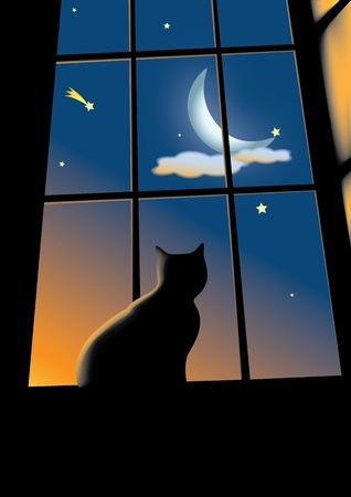 moon night: cat sitting on the window and looking on the morning sky with the moon in clouds and stars
