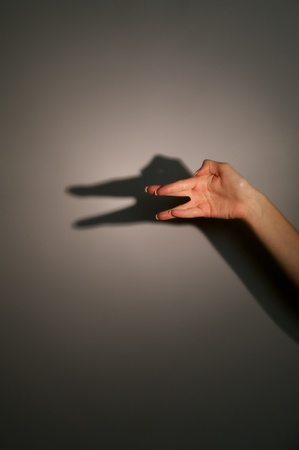 silhouette shadow of animal from young womans hands Stock Photo