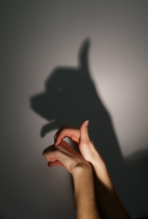silhouette shadow of young dog from young womans hands Stock Photo