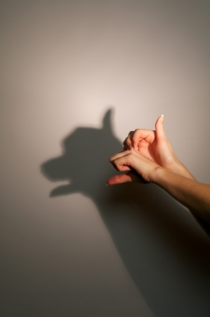 woman shadow: silhouette shadow of dog or bear from young womans hands Stock Photo