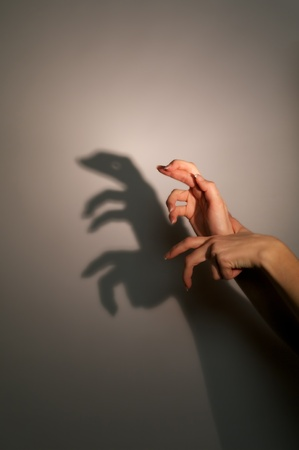 silhouette shadow of lizard from young womans hands photo