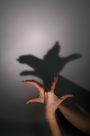 silhouette shadow of bird from young womans hands