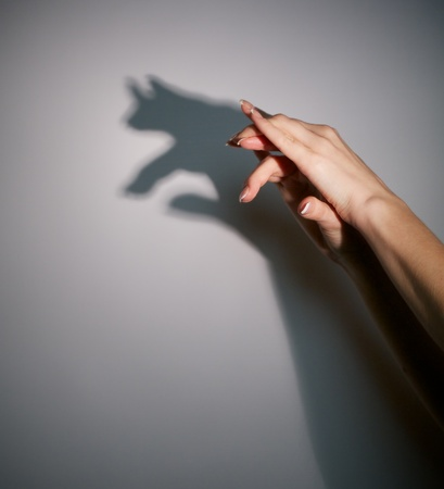 silhouette shadow of animal from young woman
