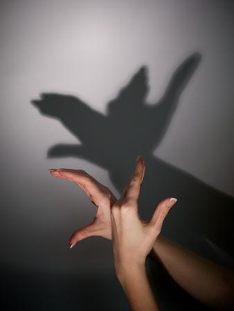 silhouet schaduw van de vogel uit jonge vrouw