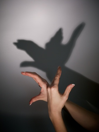 shadow face: silhouette shadow of bird from young woman Stock Photo