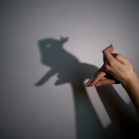 silhouette shadow of rabbit from young woman