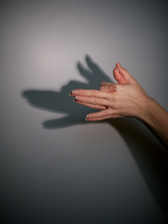 silhouette shadow of wolf from young woman