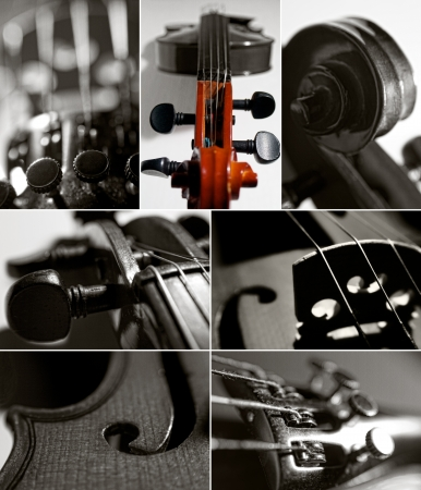 violin collage photo