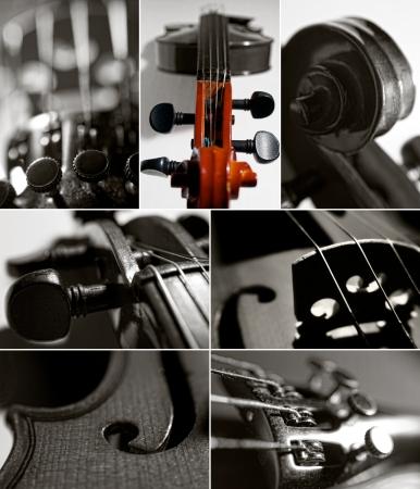 violin collage
