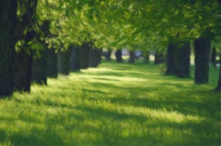 spring green lane in the park Stock Photo - 16351700