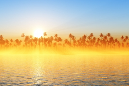 sun rays behind coconut palms and golden fog photo