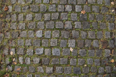 Old Cobbled Stones Road Texture Close up with Autumn Leaves and Green Grass