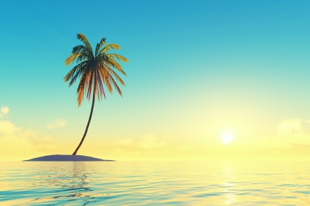 single tropical island with coconut palm at sunset photo