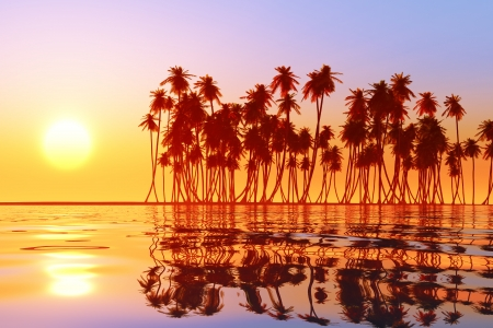 coconut palms at sunset over tropic sea