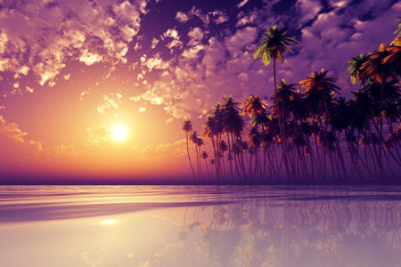 coconut palms at violet sunset over tropic sea Stockfoto