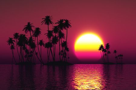 palms silhouette on coconut islands at pink sunset photo