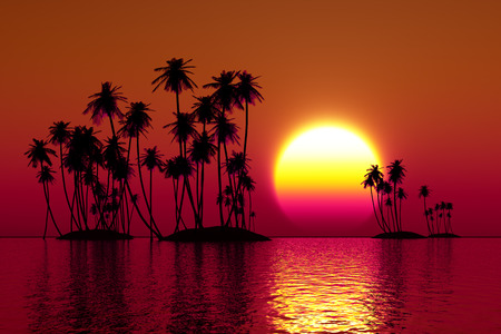 palms silhouette on coconut islands at red sunset photo