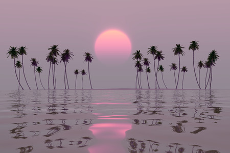 pink sun over tropical coconut island sunset photo
