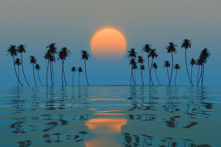 orange sun over tropical coconut island blue sunset photo
