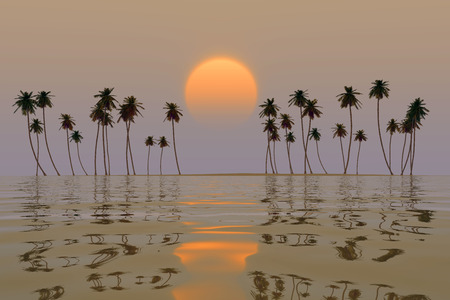 yellow sun over tropical coconut island sunset photo