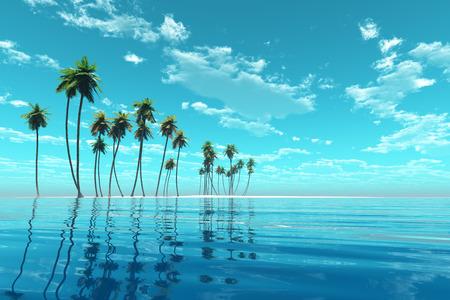 coconut island at turquoise tropic sea toned image