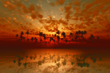 dramatic tropical sunset with red clouds over coconut island photo