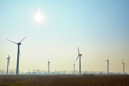 power in nature turbine: Wind turbine farm at morning time, image with copyspace