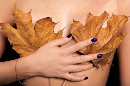 senos: pechos femeninos cubiertos con hojas de arce secas