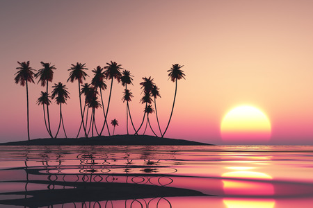 pink sunset: pink sunset over tropical coconut island