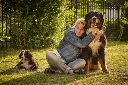 bernese dog: mature woman hugging with her bernese mountain dog