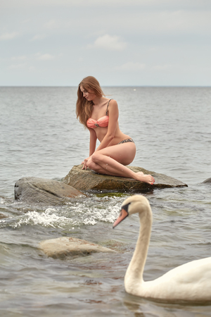 swimming swan: beautiful woman sitting on stone at sea with swimming swan