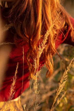 woman with long red hairs in dry grass rear view closeup