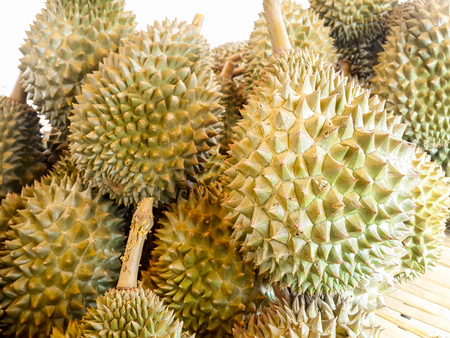The pile of Durian in fruit market,Thailand Stock Photo