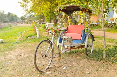 antique tricycle: Three wheel bicycle Vintage, and decorated with flowers