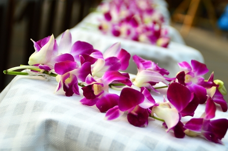 violet Orchid on white towel in Thai style spa photo